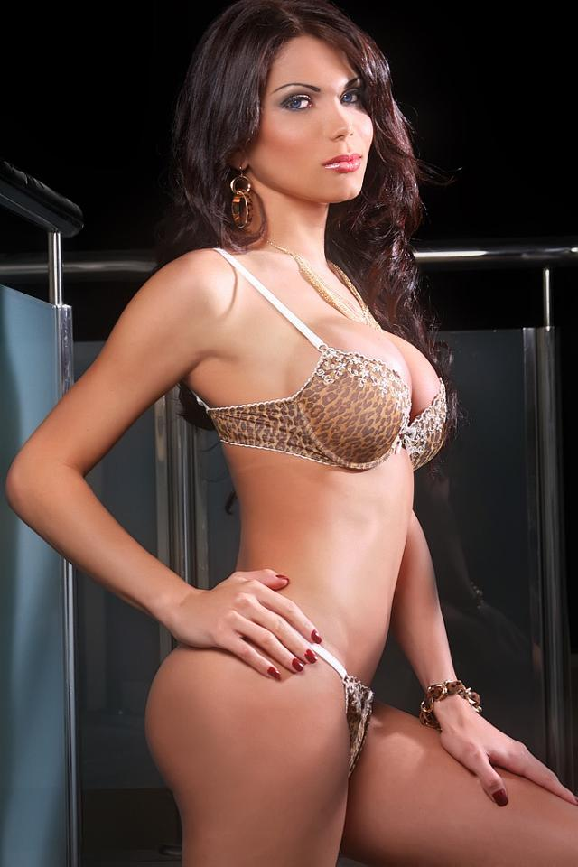 Ts transexual escorts in england