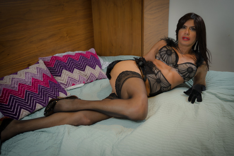 Transvestite escorts the netherlands